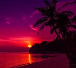 عکس زمینه غروب نارنجی و بنفش سواحل استوایی زیبا