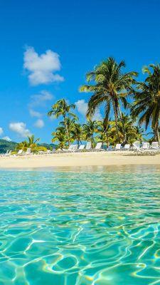 عکس زمینه ساحل گرمسیری استوایی در تابستان