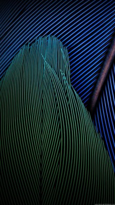 عکس زمینه سامسونگ J7 طرح پر های رنگی سبز آبی