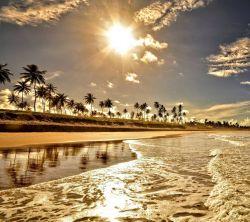 عکس زمینه طلوع طلایی لب ساحل