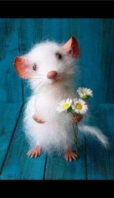 عکس زمینه موش سفید بامزه