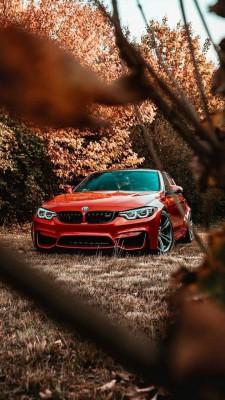 عکس زمینه BMW M3 نارنجی پاییزی
