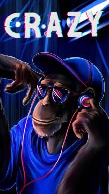 عکس زمینه میمون دیوانه