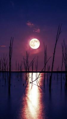 عکس زمینه شب مهتاب روی آب