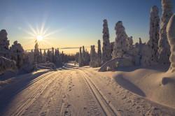عکس زمینه جاده برفی و خورشید درخشان