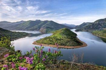 عکس زمینه گل های بهاری در جزیره ای زیبا