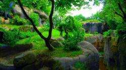 عکس زمینه طبیعت خوش رنگ سه بعدی