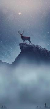 عکس زمینه گوزن کریسمس برفی