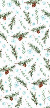 عکس زمینه بلوط و شاخه های کاج کریسمس