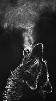 عکس زمینه گرگ خفن سیاه سفید گنگ بالا