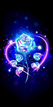 عکس زمینه گل رز نئونی عاشقانه آبی صورتی