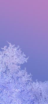 عکس زمینه اصلی شیائومی ردمی نوت 9 یخی