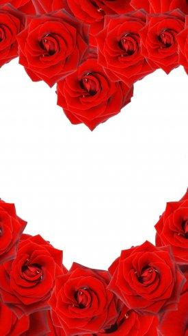 عکس زمینه گل سرخ به شکل قلب
