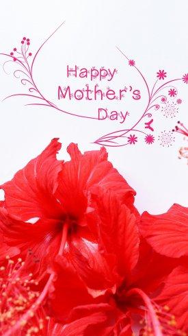 عکس زمینه روز مادر مبارک با گل قرمز