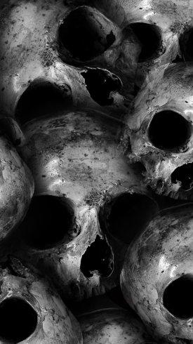 عکس زمینه جمجمه های مرگ وحشتناک