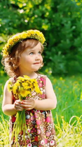 عکس زمینه دختربچه مو طلایی با گ های زرد در دست