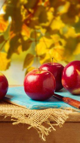 عکس زمینه سیب های قرمز در فصل پاییز